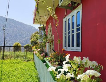 If You Love Books & Birds-These Homestays are perfect for You in Uttarakhand