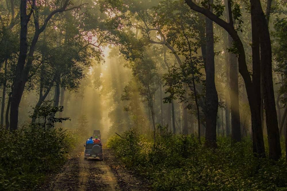 Jim Corbett National Park Uttarakhand