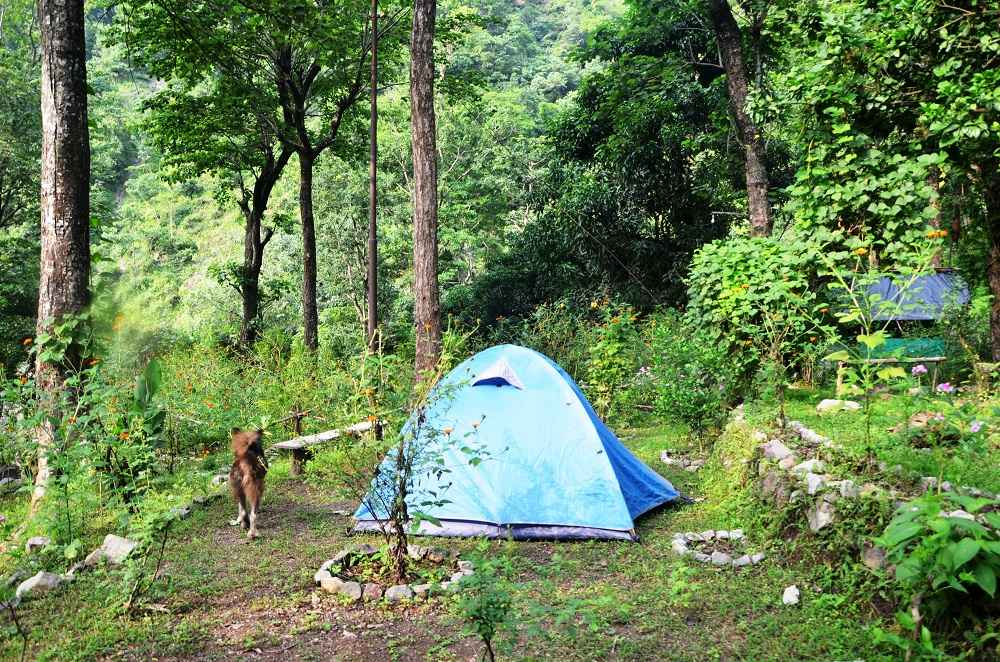 A Guide To Find The Best Backpacking Campsite Location To Pitch Tent in Rishikesh