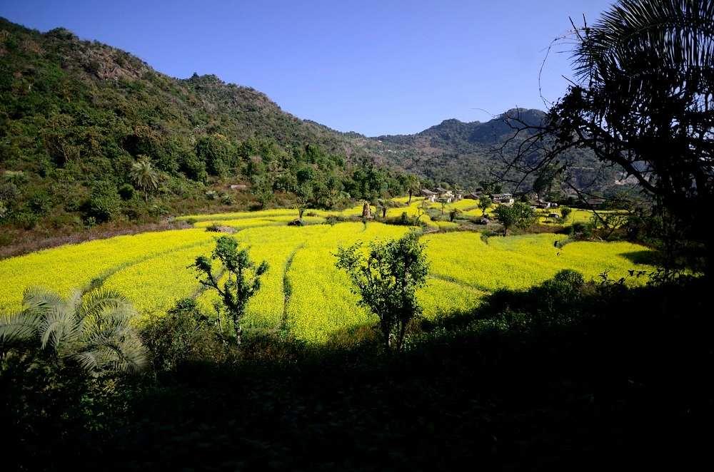 Barkot Village - Near Kunjapuri Temple