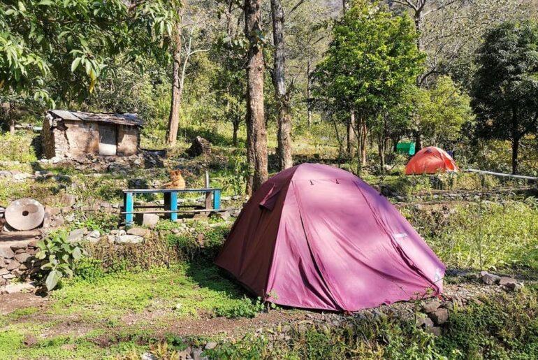 Ayurveda and Wellness Day Tour- Rishikesh Uttarakhand