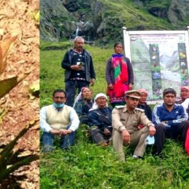 Mana Last Village of India – Now Turns as Alpine Herbal Park of India